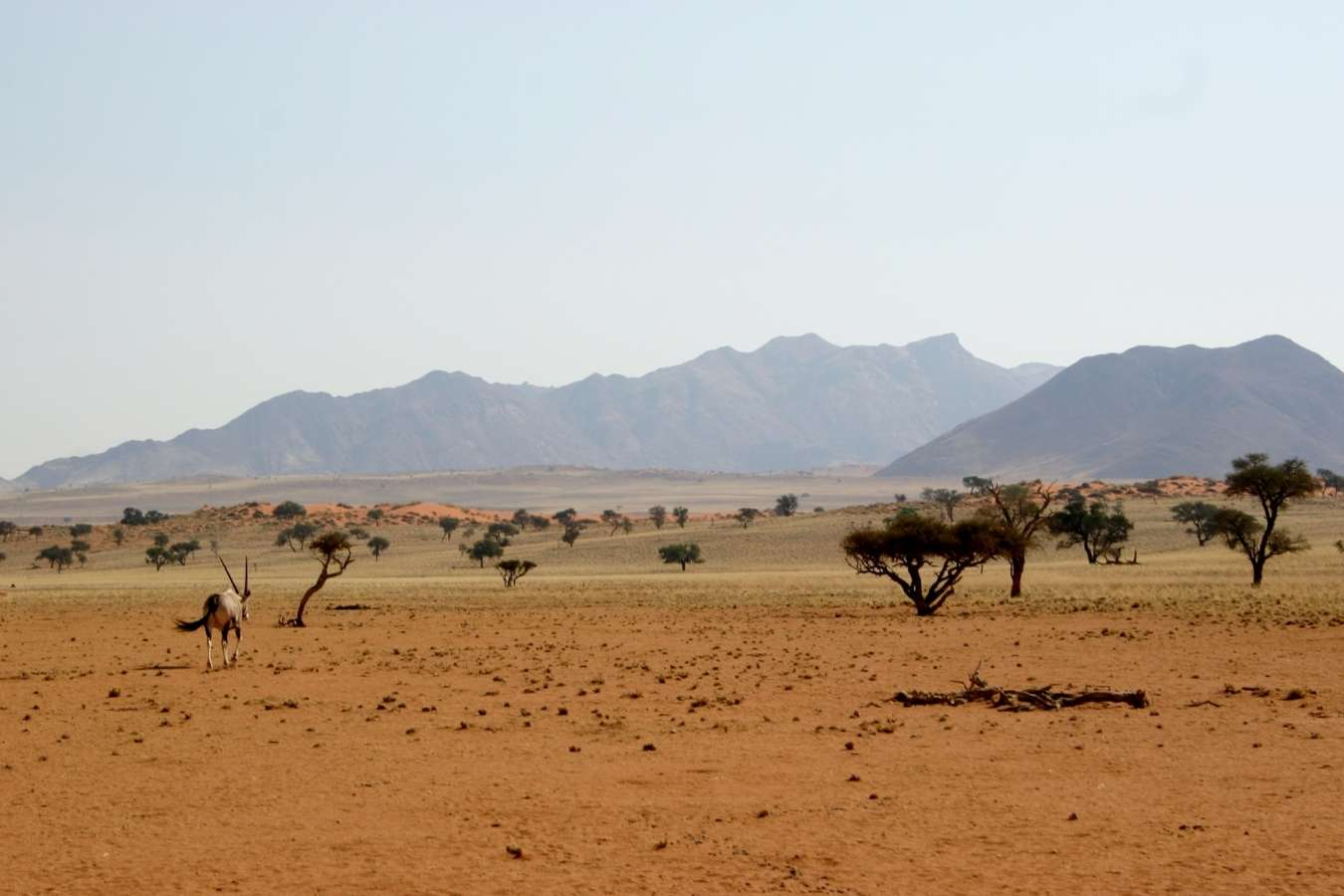 Southern Namibia, Africa